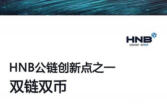 HNB公链创新点之一—— 双链双币