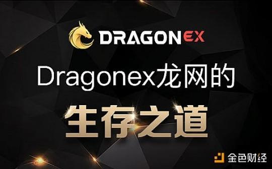 论DragonEx龙网的生存之道