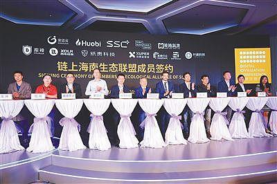 """人才+企业等市场主体 让""""链上海南""""发展更有底气图1"""