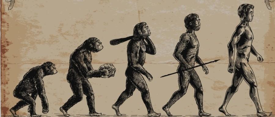 人类的600万年 信任的600万年