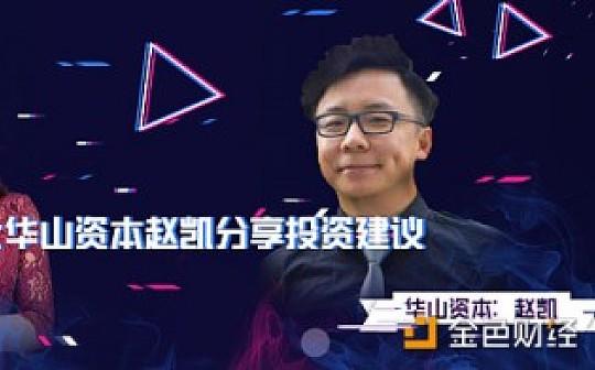 专业人士华山资本赵凯分享投资建议