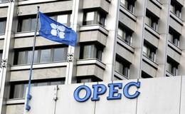 国际原油价格今日急挫 OPEC与减产监督委员会召开例会