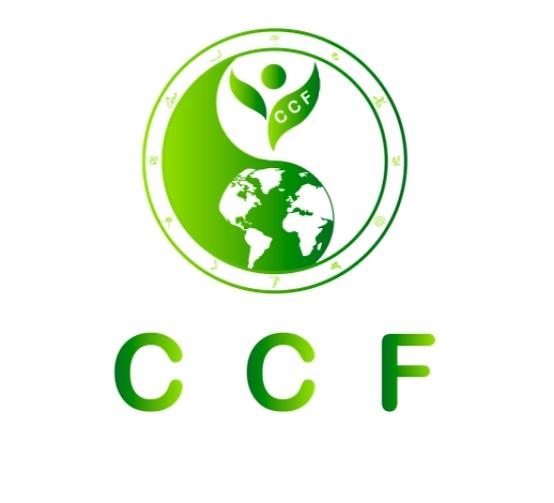 打造实体+技术完美融合 ——CCF Chain携手NewCoin交易所即将启动