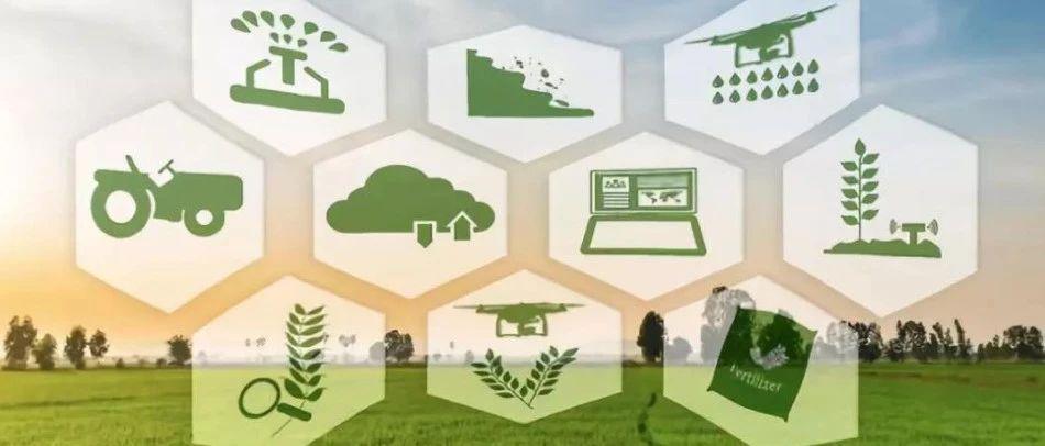 """助力全面建设小康关键年:开年两个月内5份""""区块链+农业""""文件出炉"""