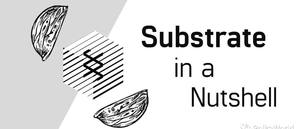 Substrate 极简概括:功能、特性与共识