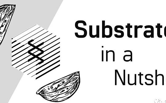 Substrate 極簡概括:功能、特性與共識