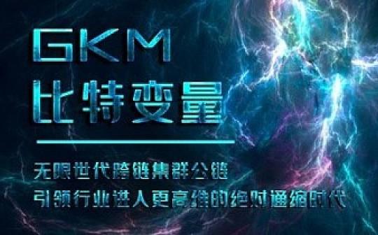 GKM跨链集群公链 引领2020区块链文明发展