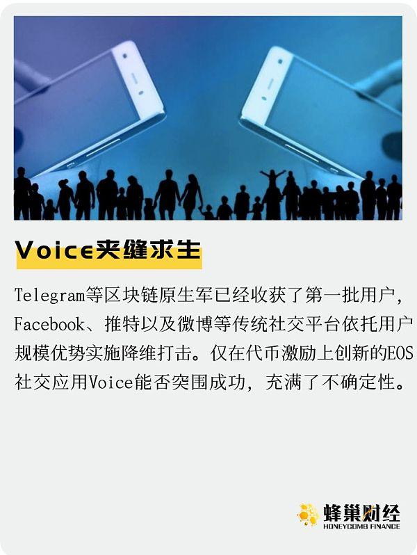 社交领域强手如云 Voice夹缝求生-宏链财经