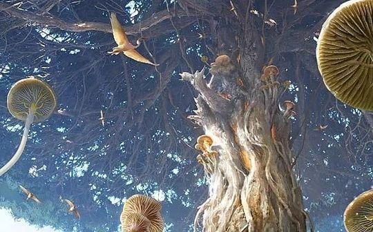 读懂以太坊的生命之树