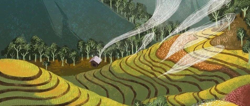 """""""区块链+农业""""推动产业创新发展"""