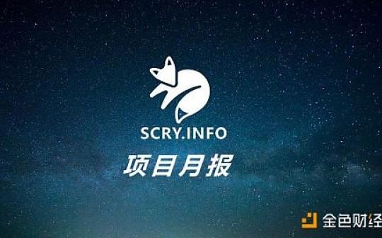 2020  Scry 2月项目进度月报