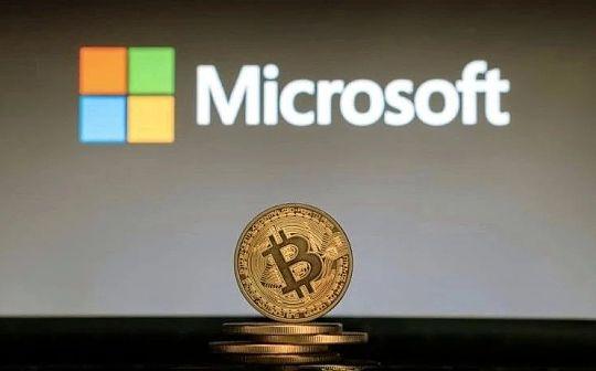 比特币上的微软帝国:随身携带证件简直弱爆了