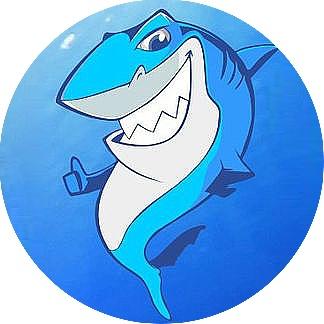 SharkTrust鲨之信SKT是什么 | 石小猴知识学院