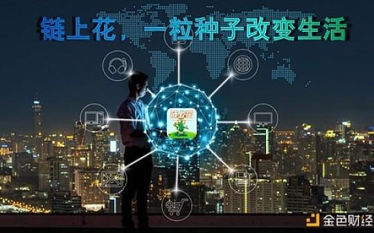 热烈庆祝链上花(LSH)4月6号全球中国首发上线