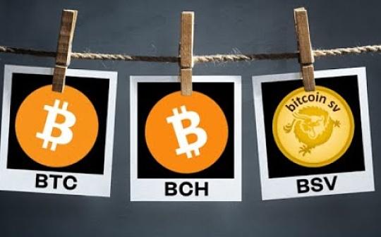 能否通过研究BCH与BSV减半 推断BTC减半后的未来?