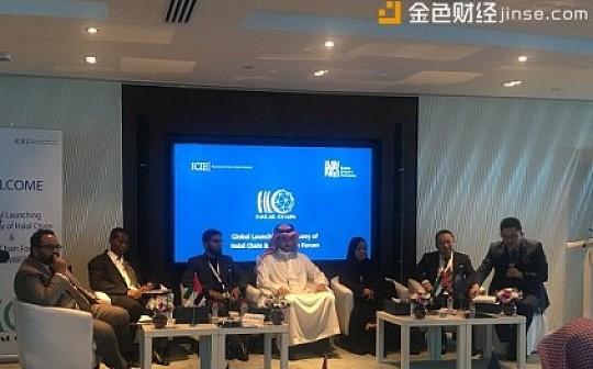 远征迪拜 IPTChain泛娱链林灏受邀参加迪拜区块链高峰论坛