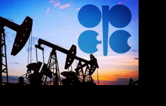 许羿杰:12.11原油筑底蓄势成功,将吹起全面冲高号角