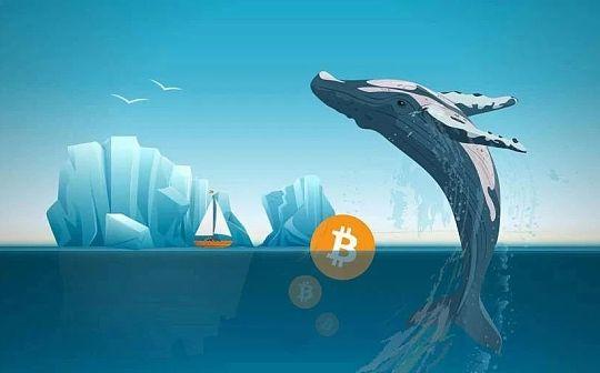 揭秘BTC巨鲸灰度投资背后舵手:加密领域投资大鳄DCG