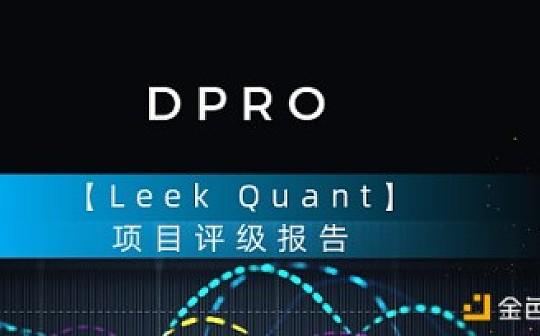 DPRO数字评级:Leek Quant
