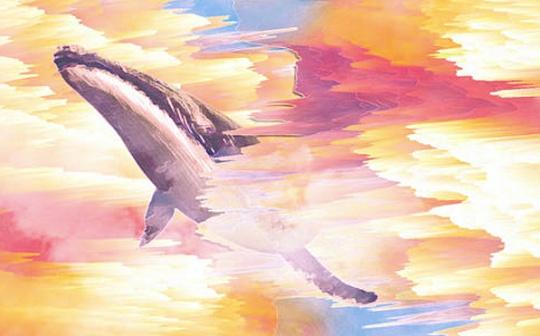 肩负券商和交易所两座大山 进击的巨鲸