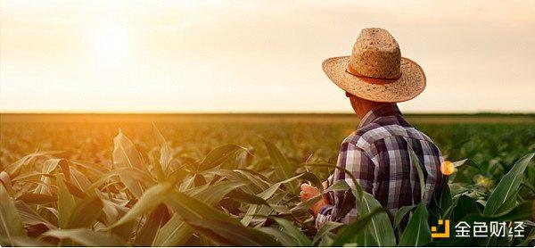 金色观察丨收益耕作农民承担风险或比意识到的更大