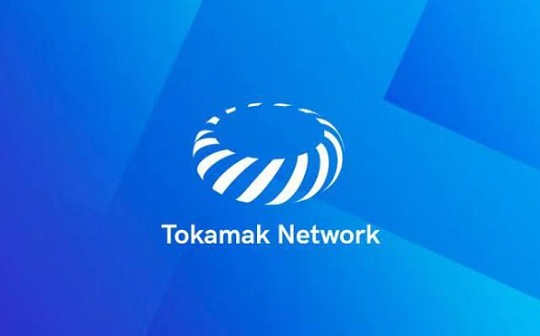"Layer2方案各有优劣   Tokamak Network如何通过""按需""概念造福开发者?"