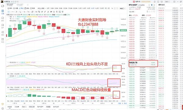 大唐财金11.16比特币走势分析