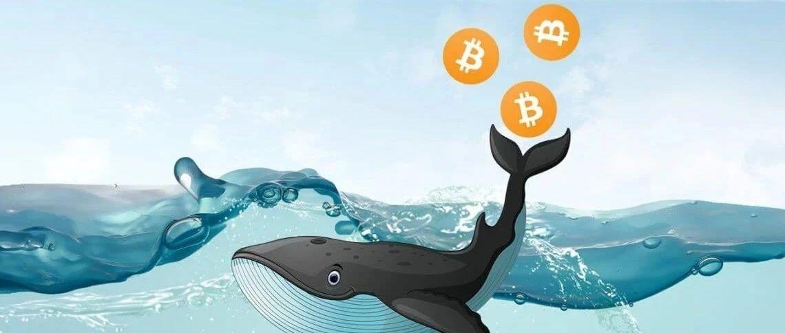 """真实数据:比特币新高之前""""巨鲸""""已开始倾销 抛售超93000枚BTC"""