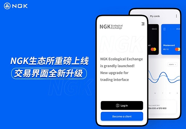 NGKEX中的合约与杠杆交易有何不同?