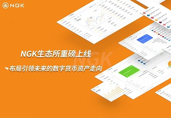 NGKEX生态所是如何确保用户资产安全的?
