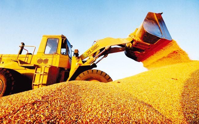 玉米期货价格拍卖加码施压盘面 短期内期价将得到支撑