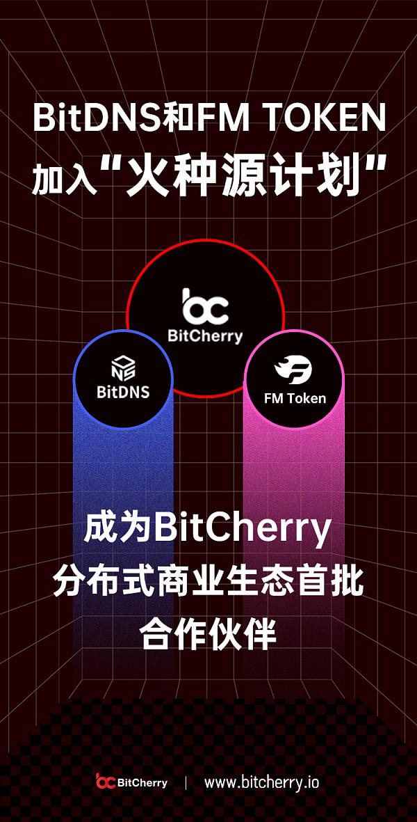 BitDNS加入火种源计划.jpg