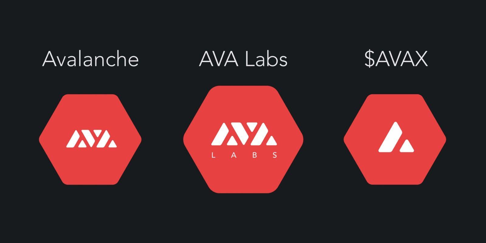 Le projet blockchain Avalanche (AVAX) lève 12 millions de dollars