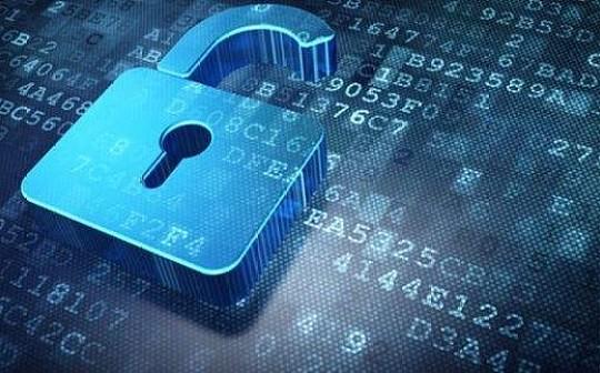 """防漏洞、保安全:网络安全领域""""白色产业链""""正在兴起"""