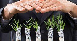 """人民日报:绿色种植严格监管 无锡放心菜从""""根""""上绿"""