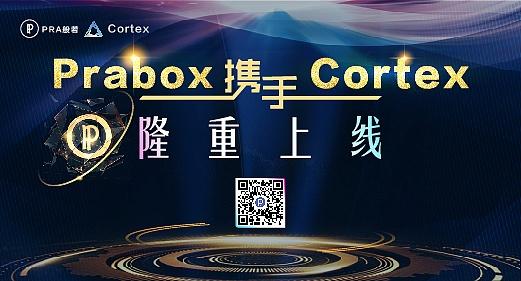 明星项目PRA般若牵手Cortex提供精准数字营销