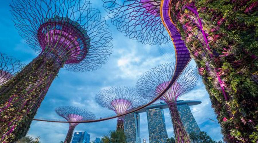 新加坡将加速区块链专利授予进程