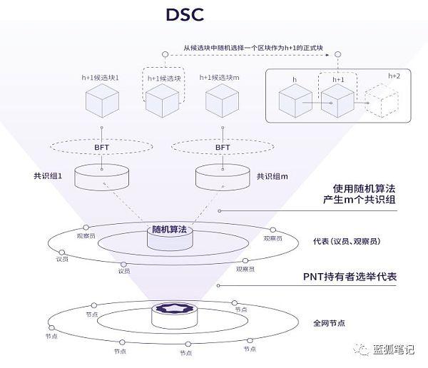 DSC共识算法:安全、效率与公平的兼顾
