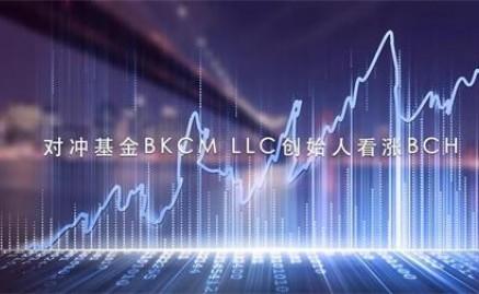 对冲基金BKCM LLC创始人看涨BCH