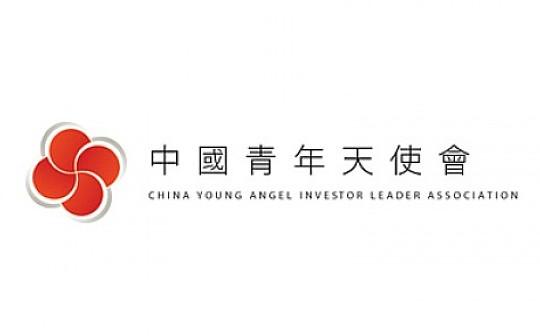 脑海链在中国青年天使会内部预告,项目将于6月启动私募