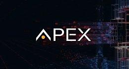 APEX评级报告:切入B2C领域,市场前景广阔
