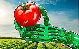 印度南部喀拉拉邦将区块链技术用于食品供应和分销