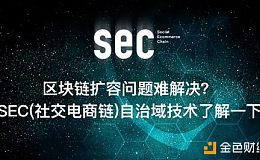 区块链扩容问题难解决?SEC(社交电商链)自治域技术了解一下