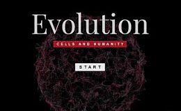 《细胞进化》获500万联合投资   区块链游戏巨大价值再获确认