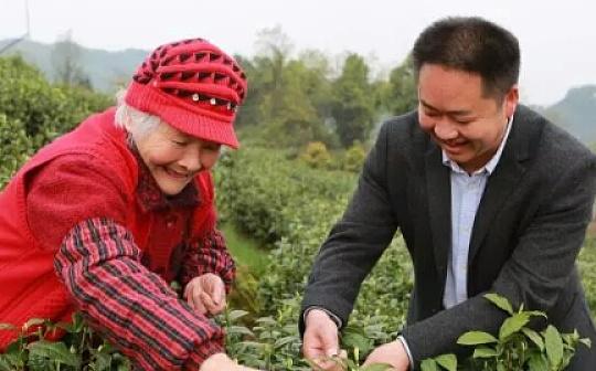 """数字化技术为农村按下""""快进键"""" 茶农首次用上支付宝区块链技术"""