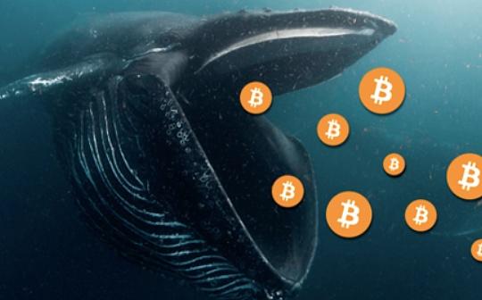 寻找比特币鲸鱼:他们在何处?