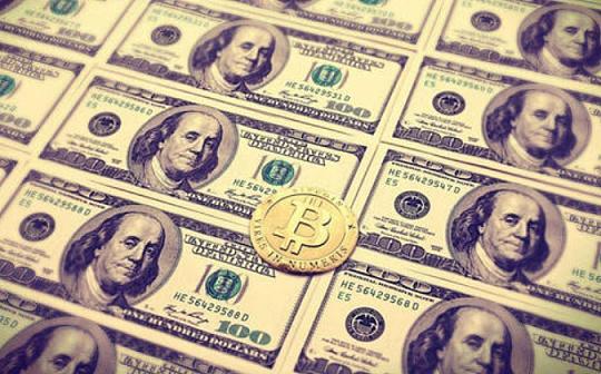 外汇与加密货币交易 初学投资者该选哪个?