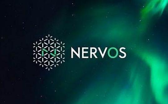 全面了解Nervos CKB的版本控制与区块链演进