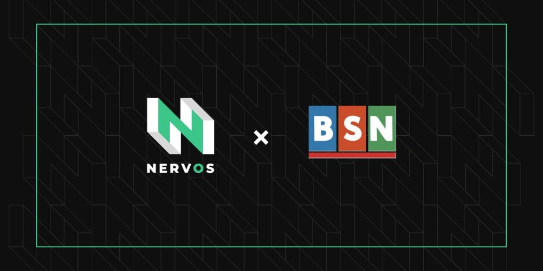 自古英雄出少年 国产新秀Nervos缘何受到BSN国家队的青睐