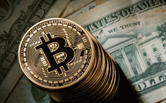 新聞周刊 | 多家海外機構接受BTC支付 V神拋售動物幣